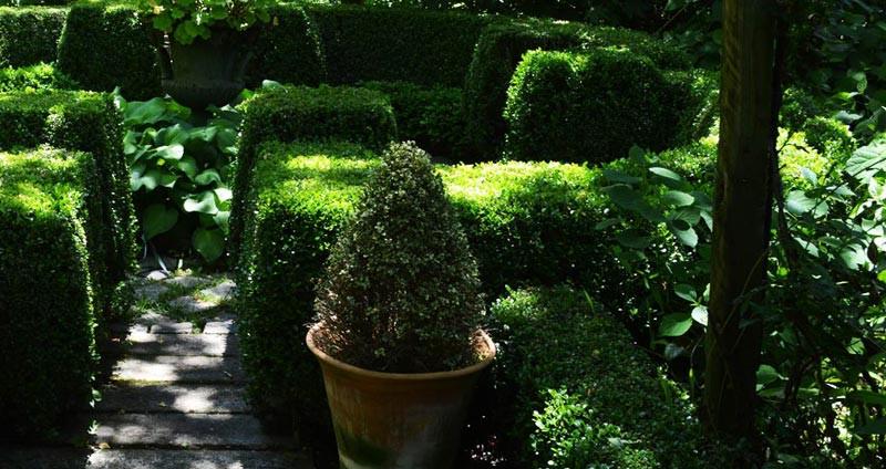 20 Inexpensive Landscape Design Degree - Home, Family ...