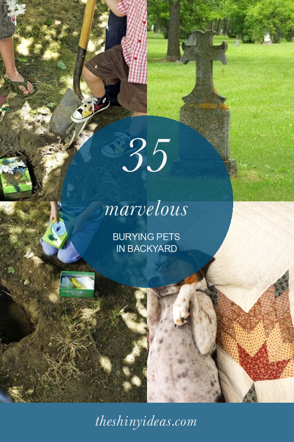 35 Marvelous Burying Pets In Backyard - Home, Family ...